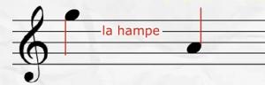 hampe